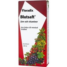 Floradix Kräuter Blutsaft 250 ml