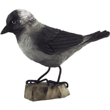 DecoBird Kaja