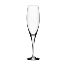 Intermezzo Satin Champagneglass