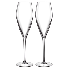 LB Atelier champagneglass Prosecco 2-pack