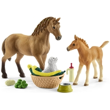 Schleich 42432 Sarah's Baby Animal Care